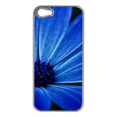 Flower Apple Iphone 5 Case (silver) by Siebenhuehner