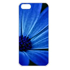 Flower Apple Iphone 5 Seamless Case (white) by Siebenhuehner