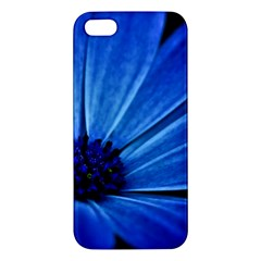 Flower Iphone 5s Premium Hardshell Case by Siebenhuehner
