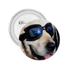 Cool Dog  2 25  Button by Siebenhuehner