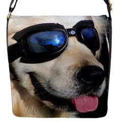 Cool Dog  Removable Flap Cover (small) by Siebenhuehner