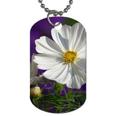 Cosmea   Dog Tag (one Sided) by Siebenhuehner
