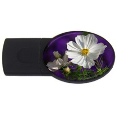 Cosmea   4gb Usb Flash Drive (oval) by Siebenhuehner