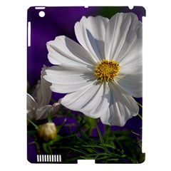 Cosmea   Apple Ipad 3/4 Hardshell Case (compatible With Smart Cover) by Siebenhuehner