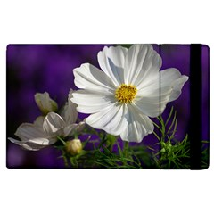 Cosmea   Apple Ipad 3/4 Flip Case by Siebenhuehner