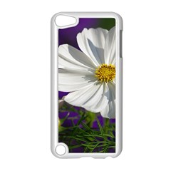 Cosmea   Apple Ipod Touch 5 Case (white) by Siebenhuehner