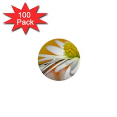 Daisy With Drops 1  Mini Button (100 Pack) by Siebenhuehner