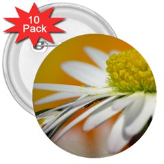 Daisy With Drops 3  Button (10 Pack) by Siebenhuehner