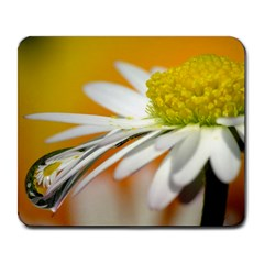 Daisy With Drops Large Mouse Pad (rectangle) by Siebenhuehner