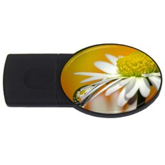 Daisy With Drops 4gb Usb Flash Drive (oval)