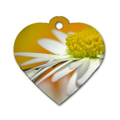 Daisy With Drops Dog Tag Heart (two Sided) by Siebenhuehner