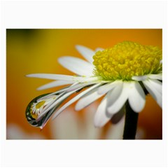 Daisy With Drops Glasses Cloth (large, Two Sided) by Siebenhuehner