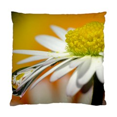 Daisy With Drops Cushion Case (two Sided)  by Siebenhuehner