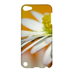 Daisy With Drops Apple Ipod Touch 5 Hardshell Case by Siebenhuehner