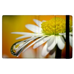 Daisy With Drops Apple Ipad 2 Flip Case by Siebenhuehner