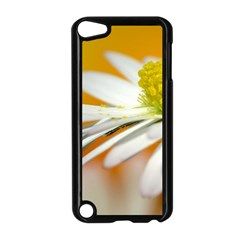 Daisy With Drops Apple Ipod Touch 5 Case (black)