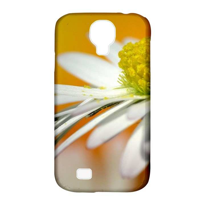 Daisy With Drops Samsung Galaxy S4 Classic Hardshell Case (PC+Silicone)