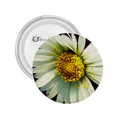 Daisy 2 25  Button by Siebenhuehner