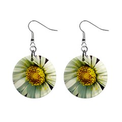 Daisy Mini Button Earrings by Siebenhuehner