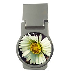 Daisy Money Clip (round) by Siebenhuehner
