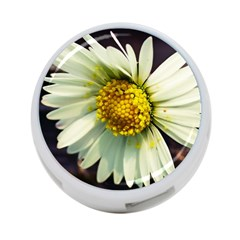 Daisy 4 Port Usb Hub (one Side) by Siebenhuehner