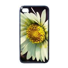 Daisy Apple Iphone 4 Case (black) by Siebenhuehner