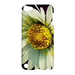 Daisy Apple Ipod Touch 5 Hardshell Case by Siebenhuehner