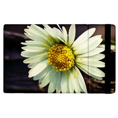 Daisy Apple Ipad 2 Flip Case by Siebenhuehner