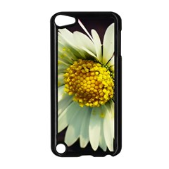 Daisy Apple Ipod Touch 5 Case (black) by Siebenhuehner