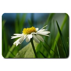 Daisy Large Door Mat by Siebenhuehner
