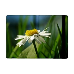 Daisy Apple Ipad Mini Flip Case by Siebenhuehner