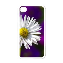 Daisy Apple Iphone 4 Case (white) by Siebenhuehner