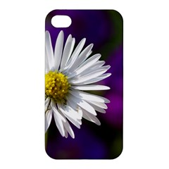 Daisy Apple Iphone 4/4s Premium Hardshell Case by Siebenhuehner