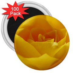 Yellow Rose 3  Button Magnet (100 Pack) by Siebenhuehner