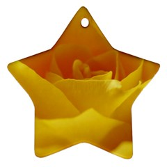 Yellow Rose Star Ornament (two Sides) by Siebenhuehner