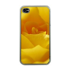 Yellow Rose Apple Iphone 4 Case (clear) by Siebenhuehner