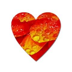 Waterdrops Magnet (heart) by Siebenhuehner