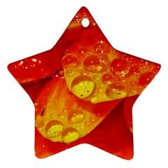 Waterdrops Star Ornament (two Sides) by Siebenhuehner