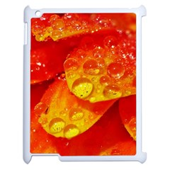 Waterdrops Apple Ipad 2 Case (white) by Siebenhuehner