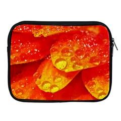 Waterdrops Apple Ipad 2/3/4 Zipper Case by Siebenhuehner