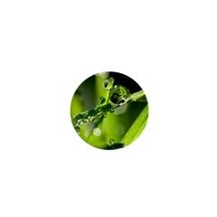 Waterdrops 1  Mini Button by Siebenhuehner
