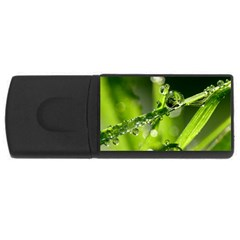 Waterdrops 4gb Usb Flash Drive (rectangle) by Siebenhuehner