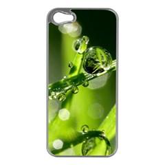 Waterdrops Apple Iphone 5 Case (silver) by Siebenhuehner