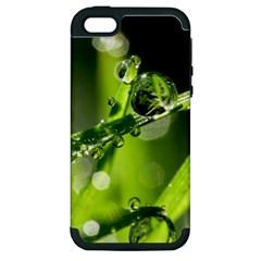 Waterdrops Apple Iphone 5 Hardshell Case (pc+silicone) by Siebenhuehner
