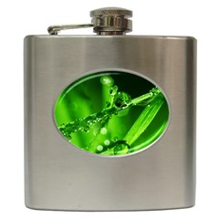 Waterdrops Hip Flask by Siebenhuehner