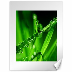 Waterdrops Canvas 36  X 48  (unframed) by Siebenhuehner