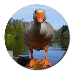 Geese 8  Mouse Pad (round) by Siebenhuehner
