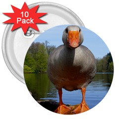 Geese 3  Button (10 Pack) by Siebenhuehner