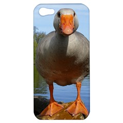 Geese Apple Iphone 5 Hardshell Case by Siebenhuehner