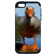 Geese Apple Iphone 5 Hardshell Case (pc+silicone) by Siebenhuehner